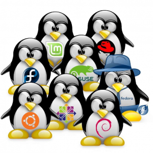 Les distributions Linux