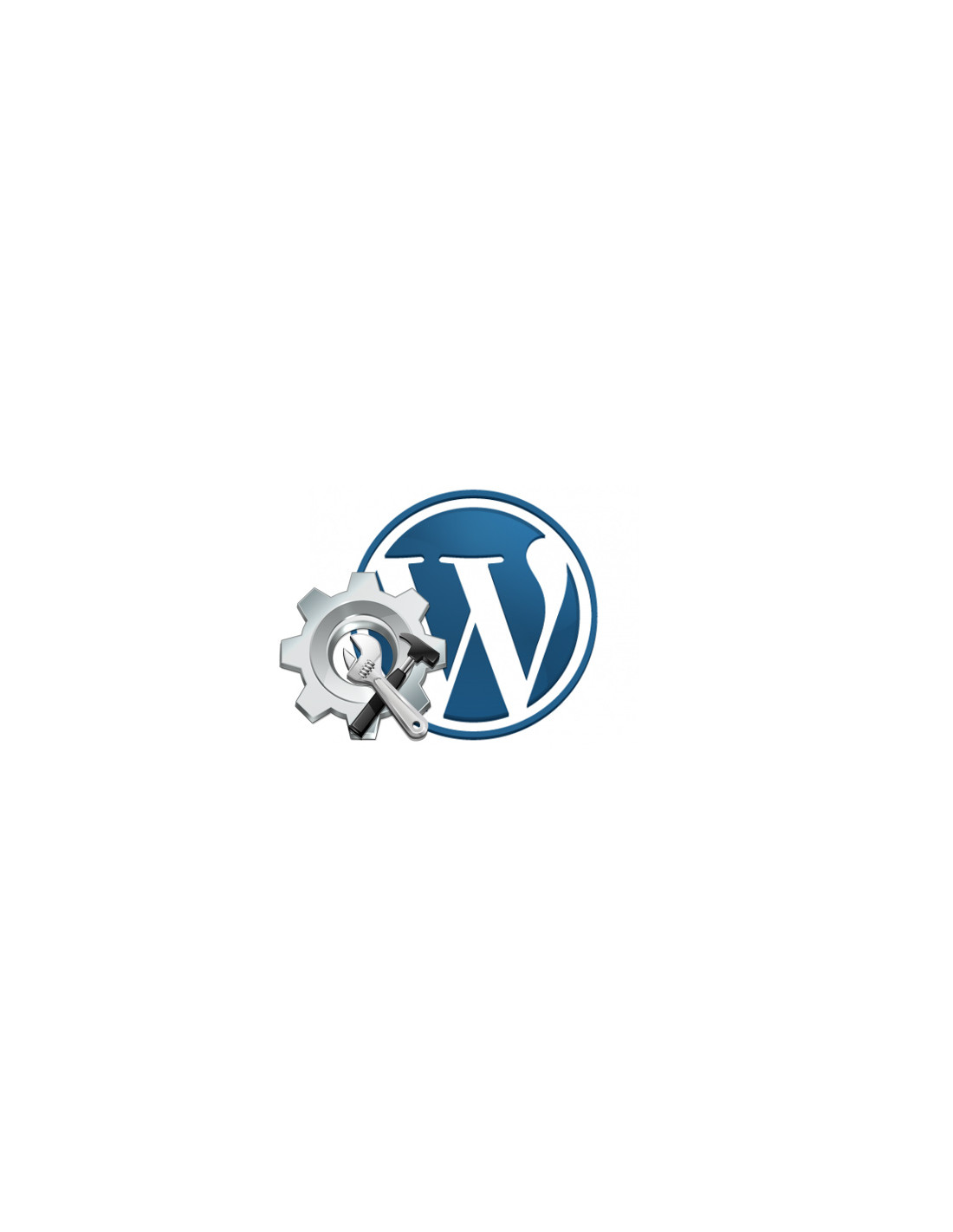 Support Wordpress